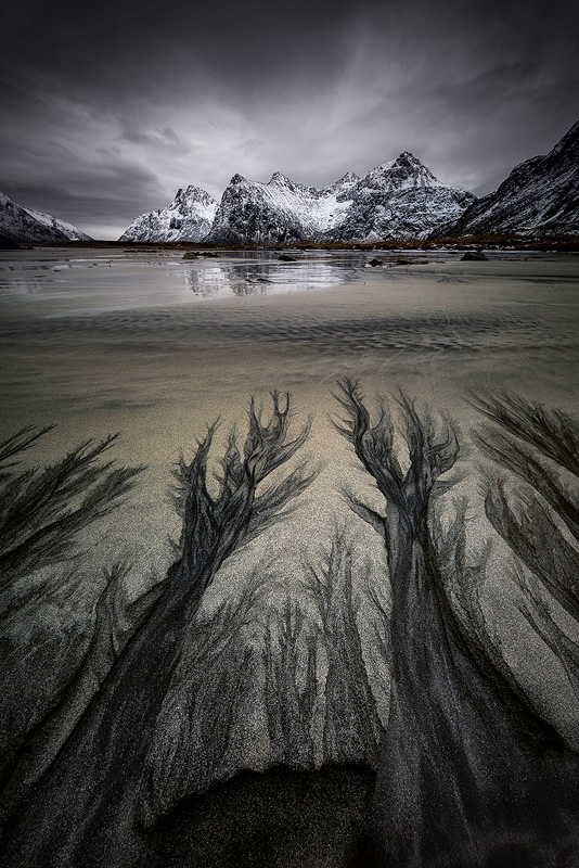 The amazing black and white sand patterns of Skagsanden Beach, Lofoten, Arctic Norway.<br>Canon EOS 5D Mark IV, Canon 11-24mm F4L  Nisi Filters 180mm ND + GND, Stacked from 4 images at 11mm, 0.8 sec, F13, ISO100
