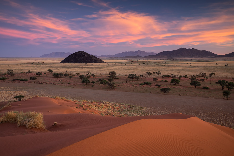 Wonderful pre-sunrise color over the red dunes of the Namib Rand